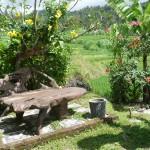 Der schöne Garten