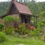 Seitenansicht des Hauses